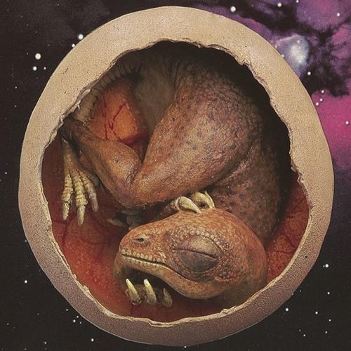 babydynosaur's avatar
