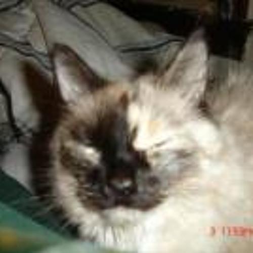 Tami Sue Muzia's avatar