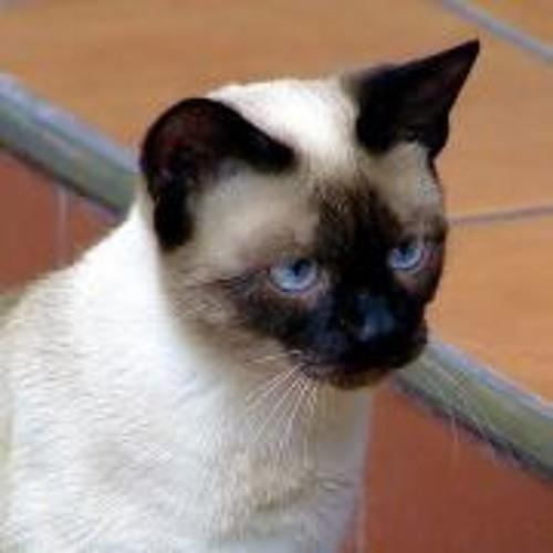 Gabriel R Maeva's avatar