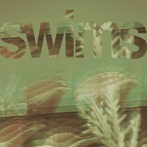 swims's avatar