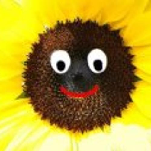 Pat Ding's avatar