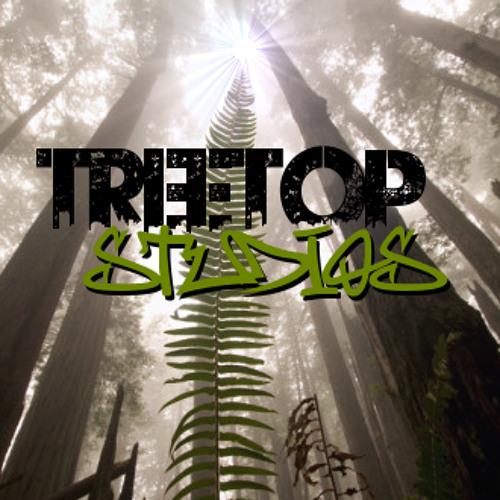 Treetop Studios's avatar