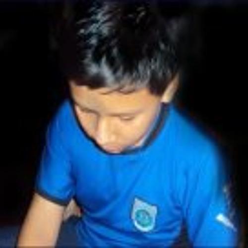 Brayan Joaquin Aguirre's avatar