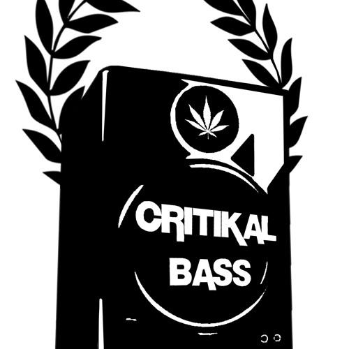 CRITIKAL BASS's avatar