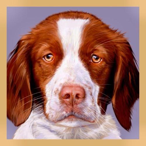 pixtl's avatar