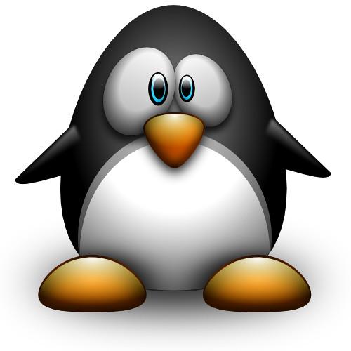 coincoin-pingouin's avatar
