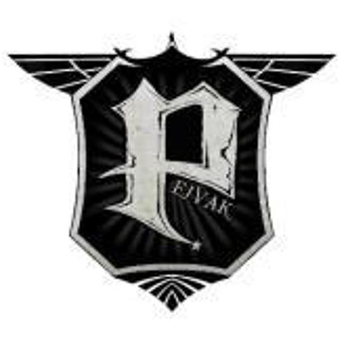 Pejvak Beat's avatar