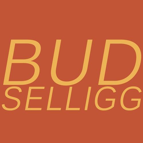 Bud Selligg's avatar