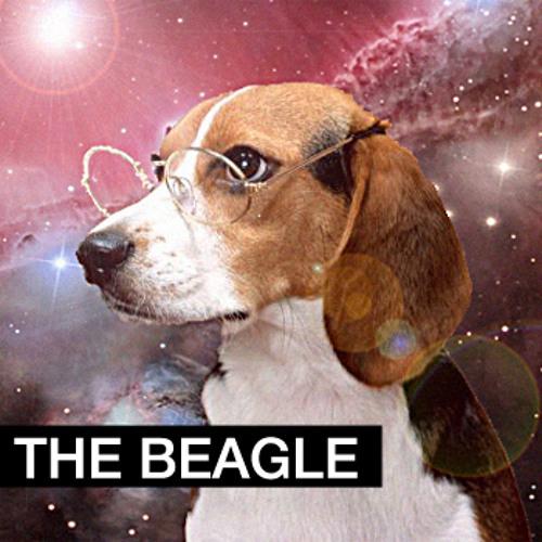 thebeagle's avatar