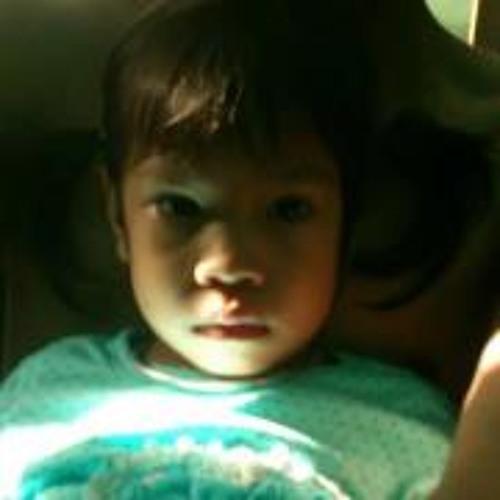 Nam Shashou's avatar