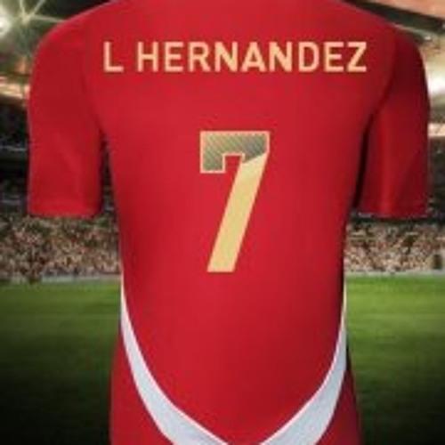 Luis Hernandez Fernandez's avatar