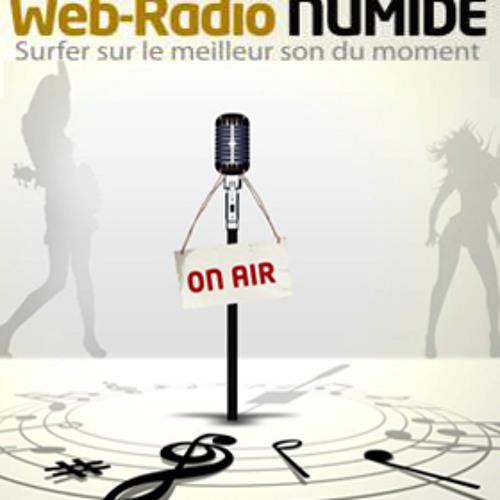 Radio Numide's avatar