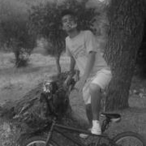 Mahmoud Fellah's avatar