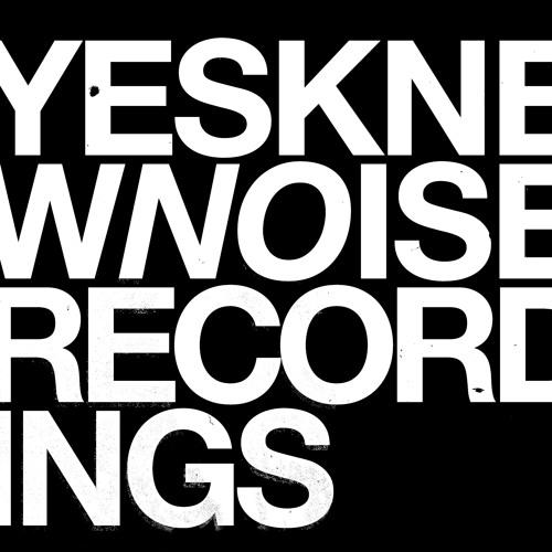 Knew Noise Recordings's avatar