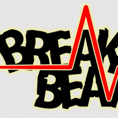 BreakZoom's avatar
