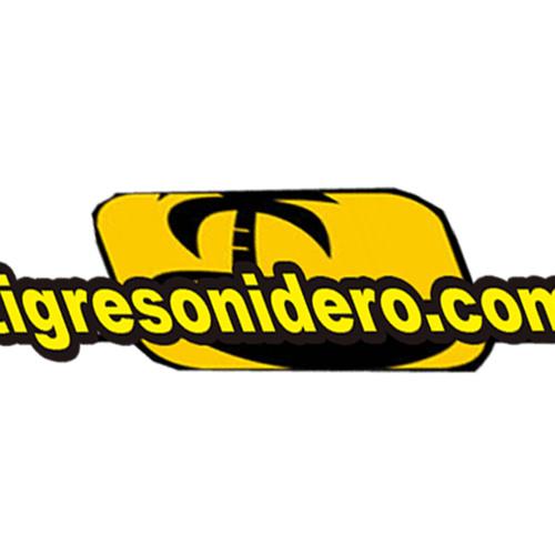 tigresonidero's avatar