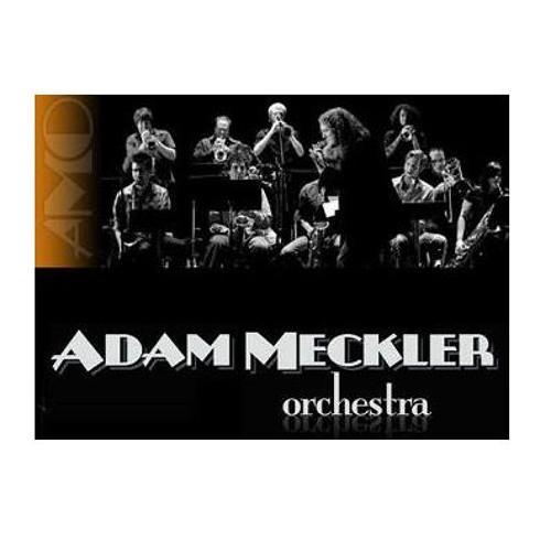Adam Meckler Orchestra's avatar