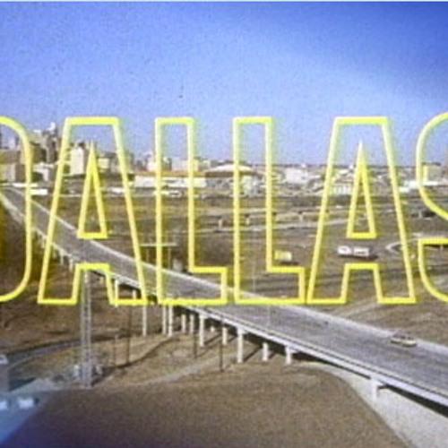 The dallas multi show's avatar