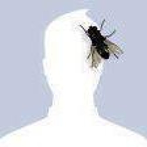 Blank Facebook Profile Picture With Fly
