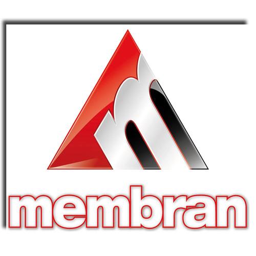 MembranEntertainmentGroup's avatar
