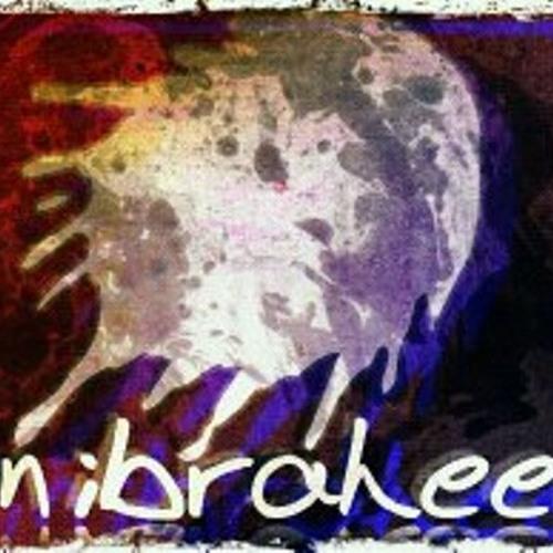 binibraheem's avatar