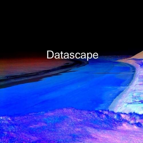 Datascape's avatar