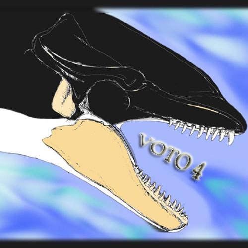 VOTO4's avatar