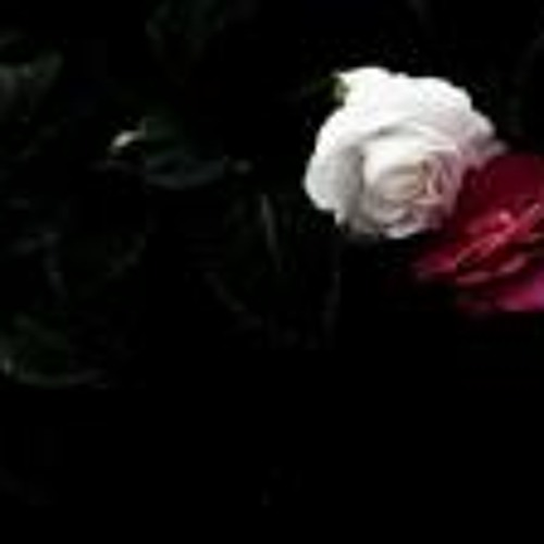 Harda Gyan's avatar