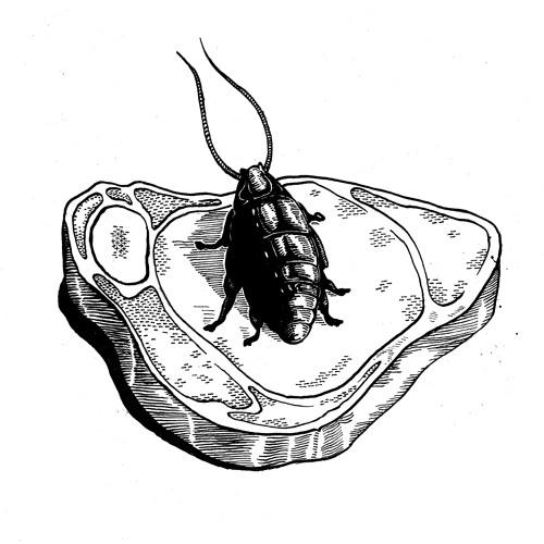 recordsofthefleshgod's avatar