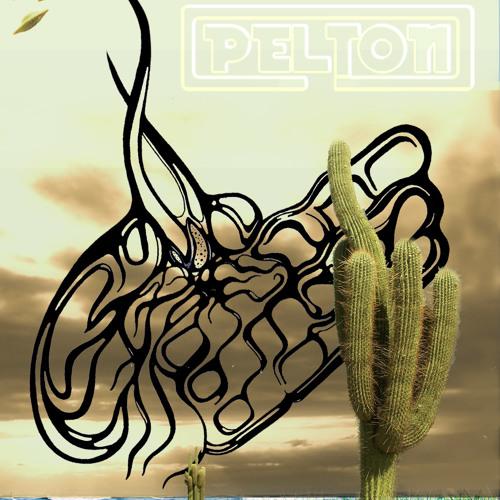 peltonmusica's avatar