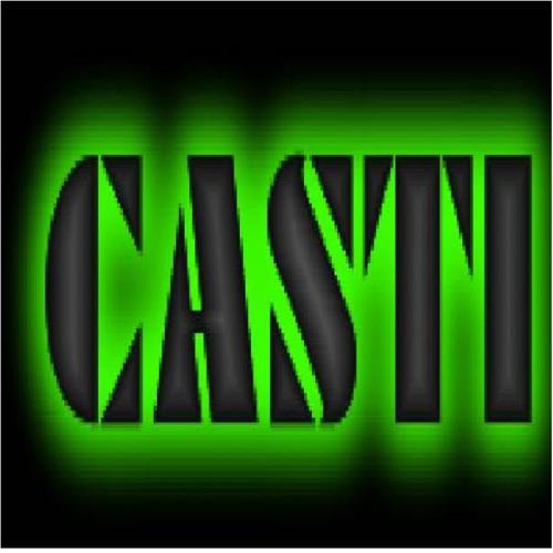 CASTI's avatar