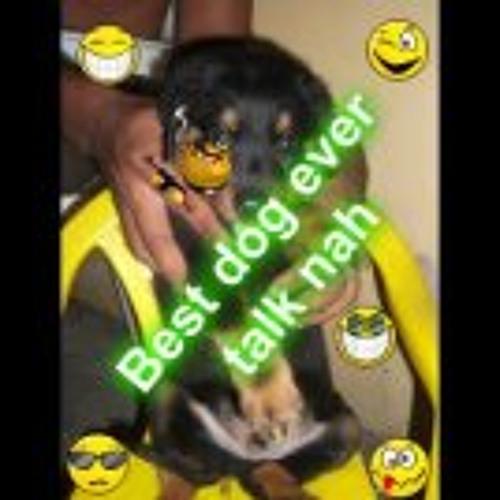 Swappidogg Pardasie's avatar