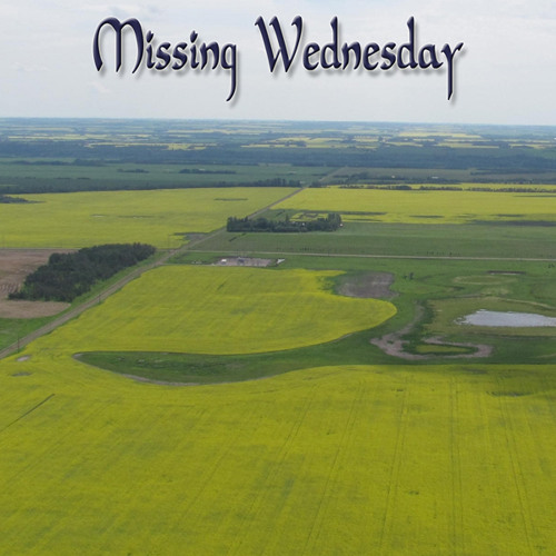 Missing Wednesday's avatar