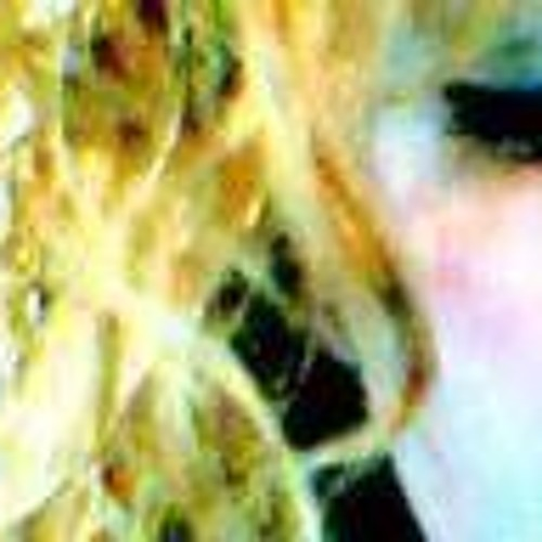 Jeni Cashwell's avatar