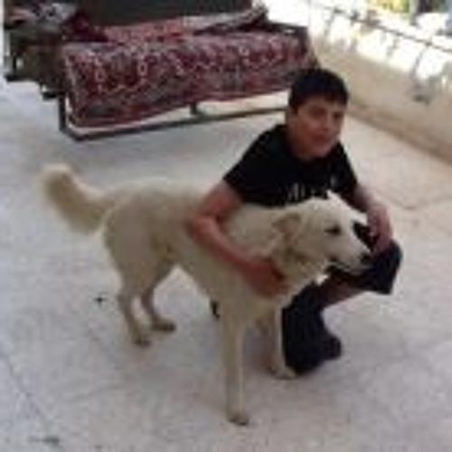 Yousef Ghanem's avatar