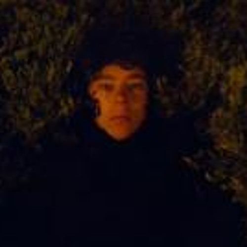 Carl Hoetjes's avatar