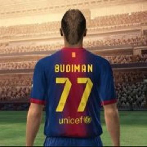 Budiman Toeloes's avatar