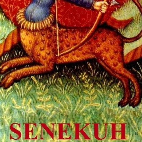 Senekuh's avatar