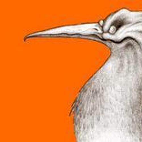 sulaventrebianco's avatar
