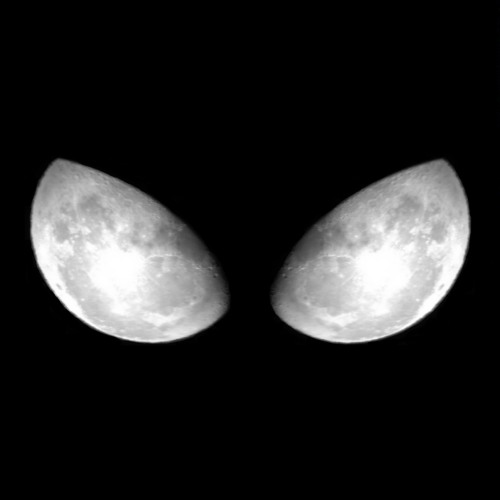 Omniphyte's avatar