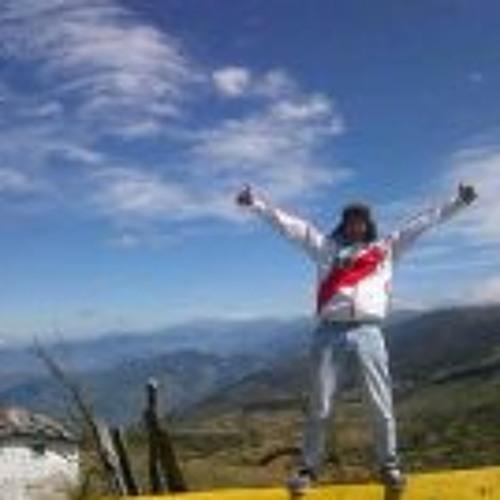Gustavo Sanchez 10's avatar