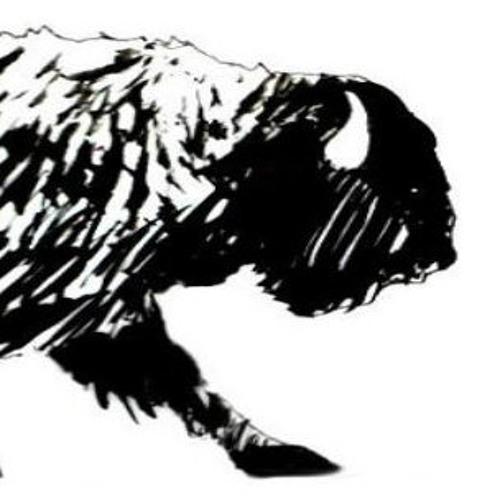 bisonteblanco's avatar