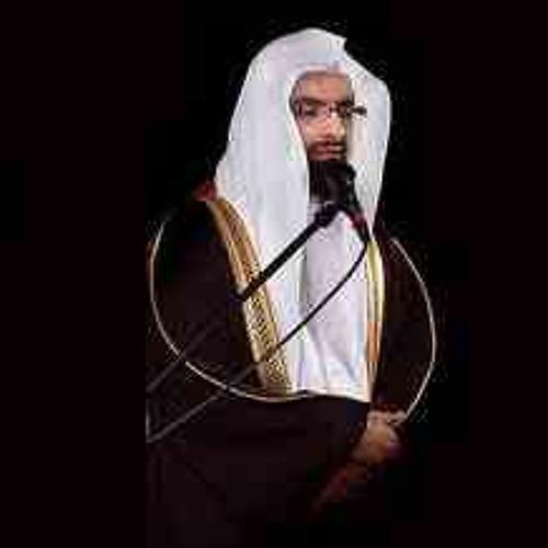 ناصر القطامي - الليلة (29)- رمضان 1433 (صلاة القيام)