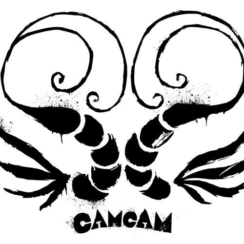 camaradascamarao's avatar