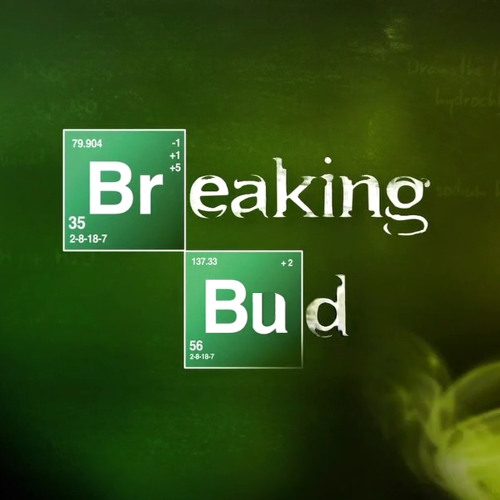 BREAKING BUD / loko's avatar