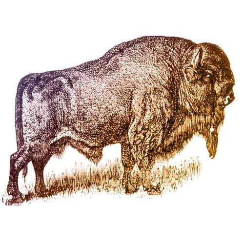 ARMLESS VICTORY's avatar