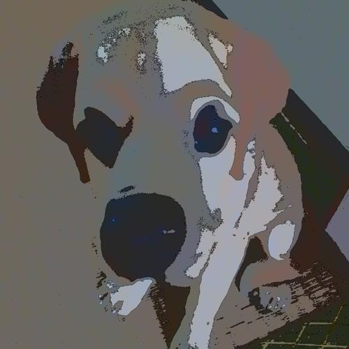 kumorix's avatar