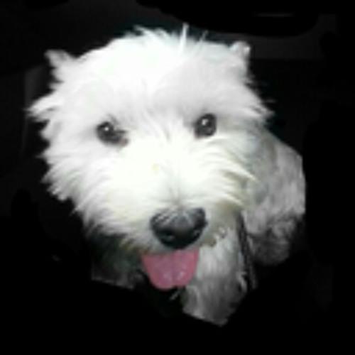 zummy's avatar