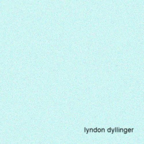 Lyndon Dyllinger's avatar