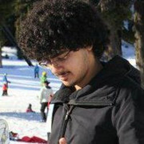 Shirrin Asal's avatar